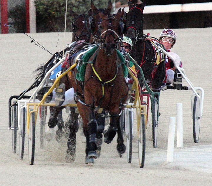 Harness Racing #6 - Larry Singer Fine Art Photography