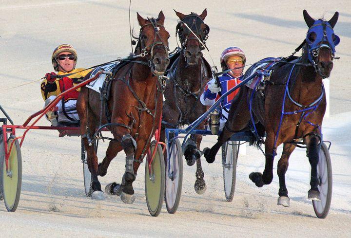 Harness Racing #3 - Larry Singer Fine Art Photography