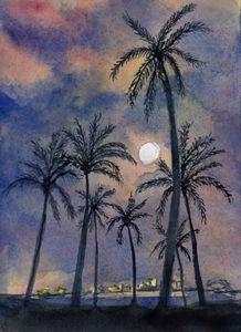 Moonlight Over Key West