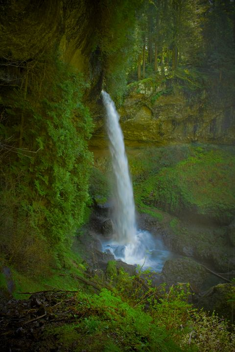 North Falls - Joey A. Poynor