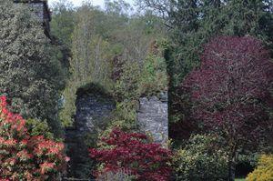 Blarney Castle Garden - David K. McMillin