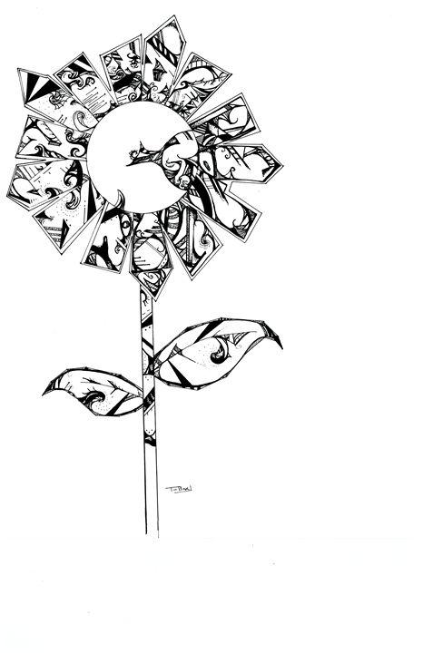 Sunflower - Timothy Boyle
