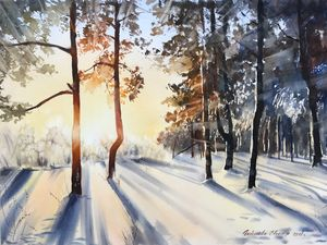Winter forest in the sunlight