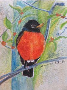 Robin (series 3 of 10)