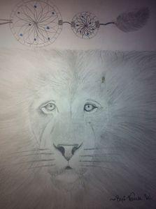 Lion Dream