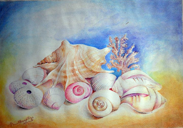 SHELLS - VASANTH WARAPITIYA