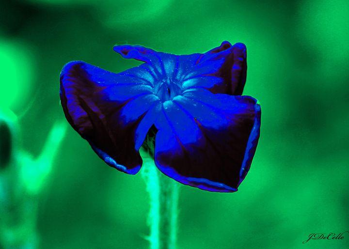 Blue - BuddingBrilliance