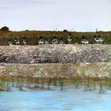 20x20 Acrylic Painting