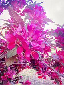 Vibrant Petals
