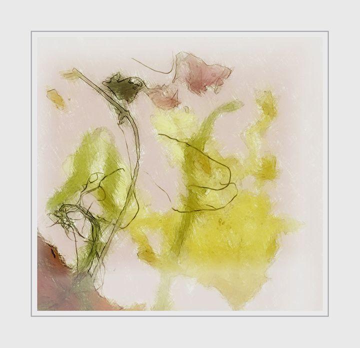 Seaweeds - imaginart