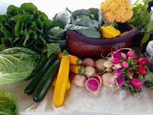 Fresh vegetables - imaginart