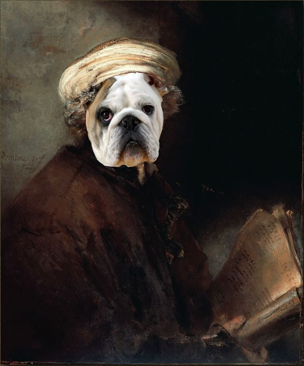 English Bulldog Rembrandt - imaginart