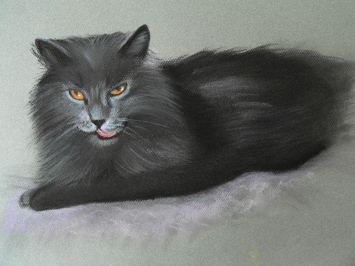 Long hair black cat - imaginart
