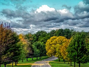 FWC Autumn Road