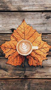 Leafs Coffee