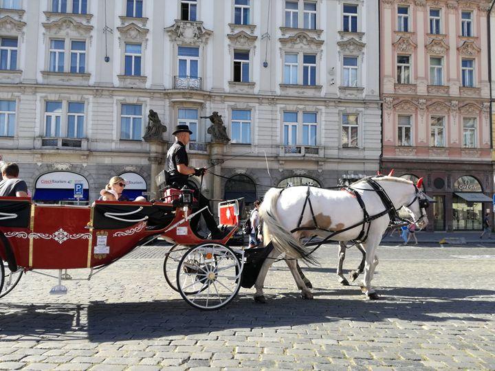 Carriage with a horse - Danciatko