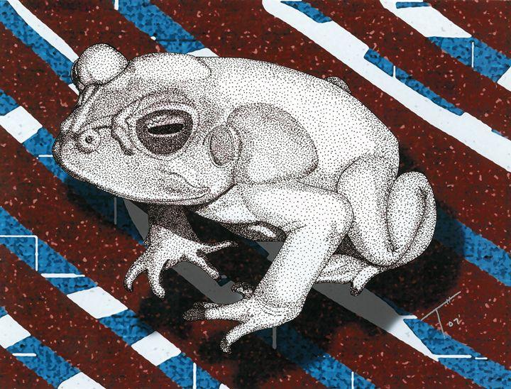 Toad D002 (Prints) - Tory Andrew Hurtado