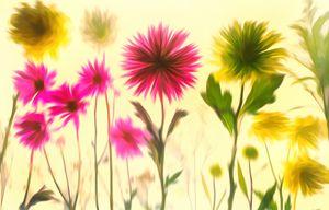 All petals