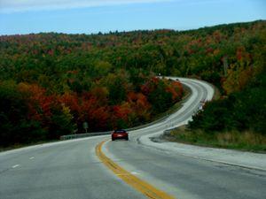Fall Season Drive
