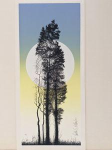 Two Cedars