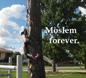 Moslem forever. - My Evil Twin