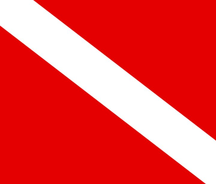 Diver Flag - My Evil Twin