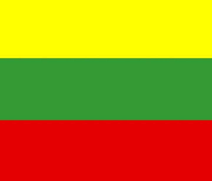 Lithuania Flag - My Evil Twin