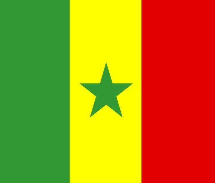 Senegal Flag - My Evil Twin