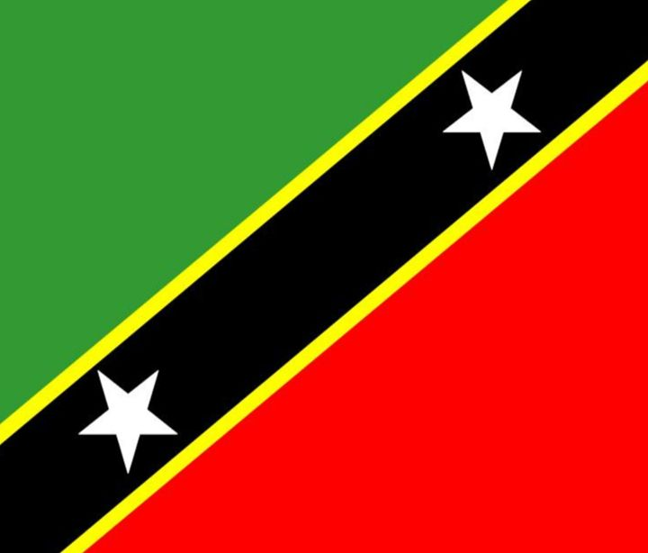 St. Kitts & Nevis Flag - My Evil Twin