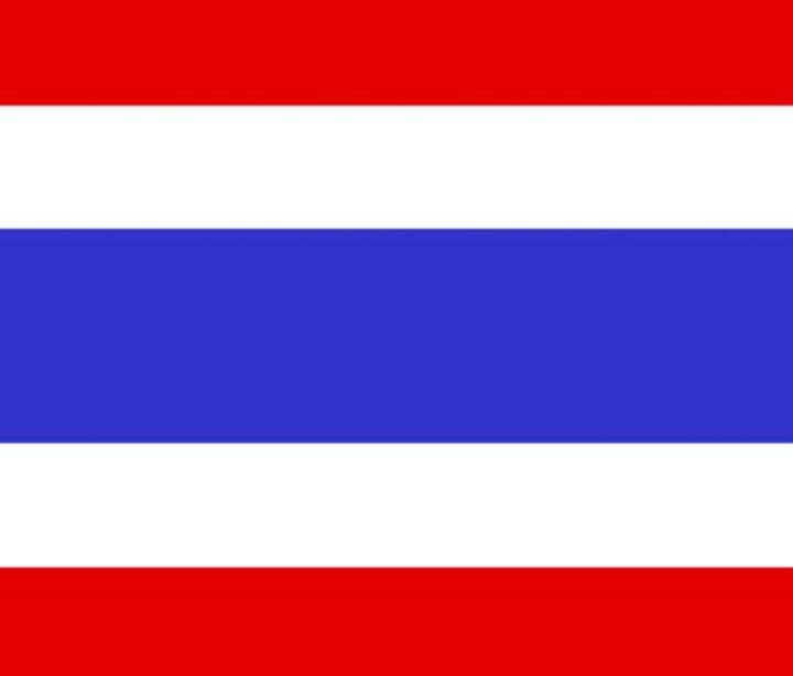 Thailand Flag - My Evil Twin