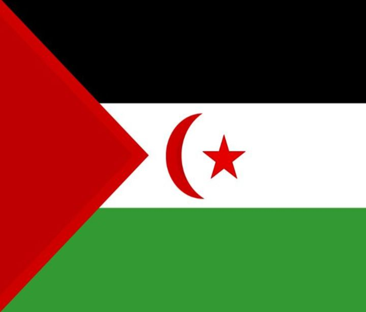 Western Sahara Flag - My Evil Twin