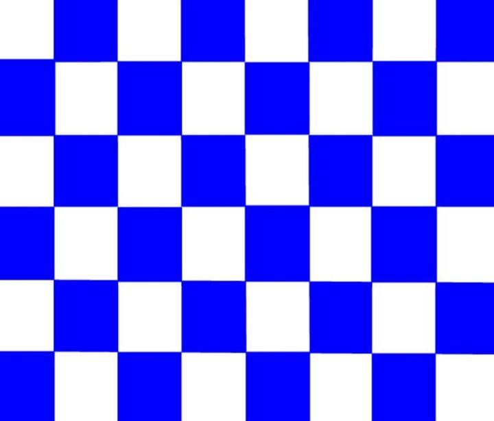 Blue & White Checkered Flag - My Evil Twin