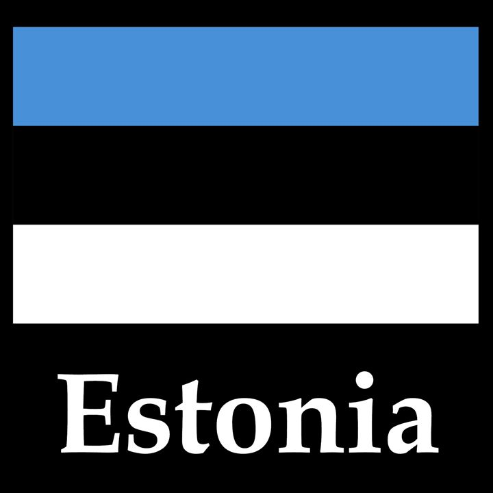Estonia Flag And Name - My Evil Twin