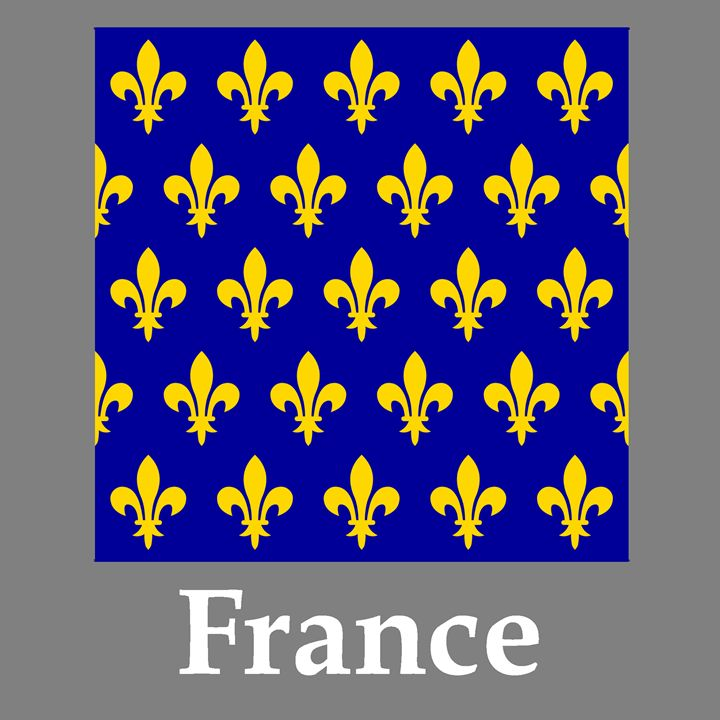 France Flag 12-13 Century And Name - My Evil Twin