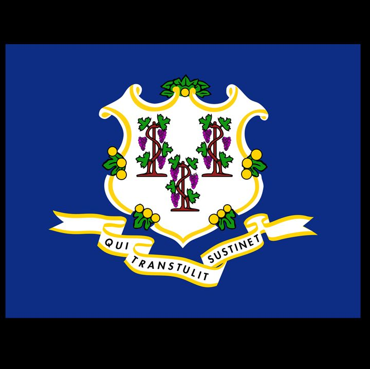 Connecticut Flag - My Evil Twin