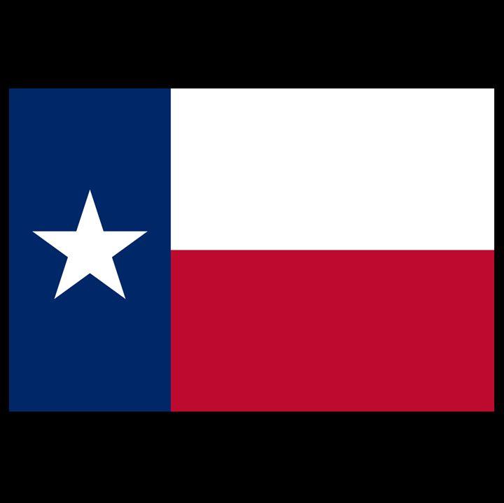 Texas Flag - My Evil Twin