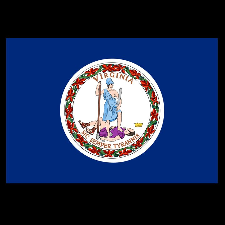 Virginia Flag - My Evil Twin