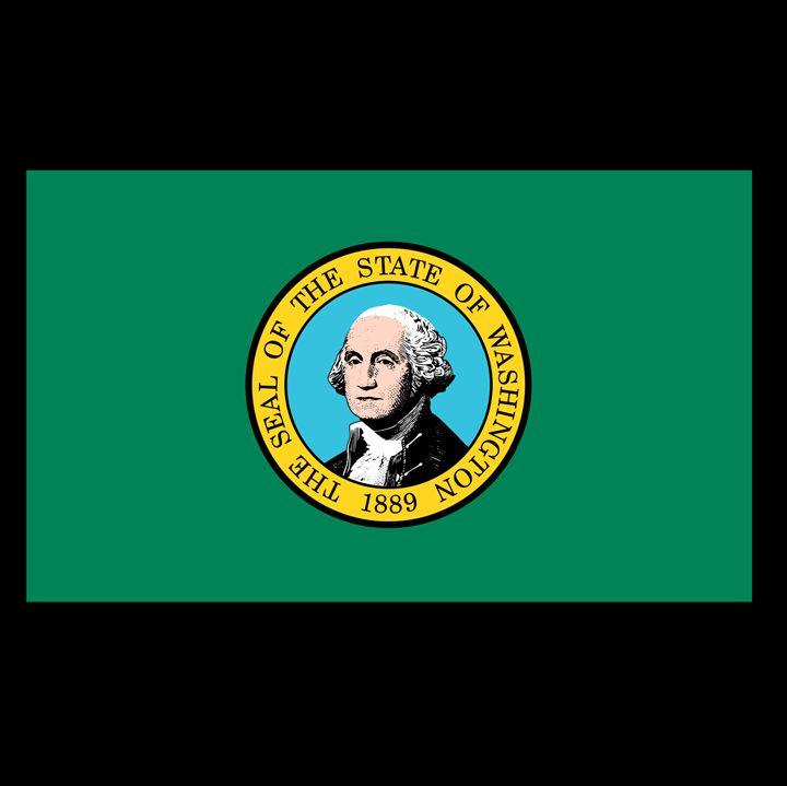 Washington Flag - My Evil Twin