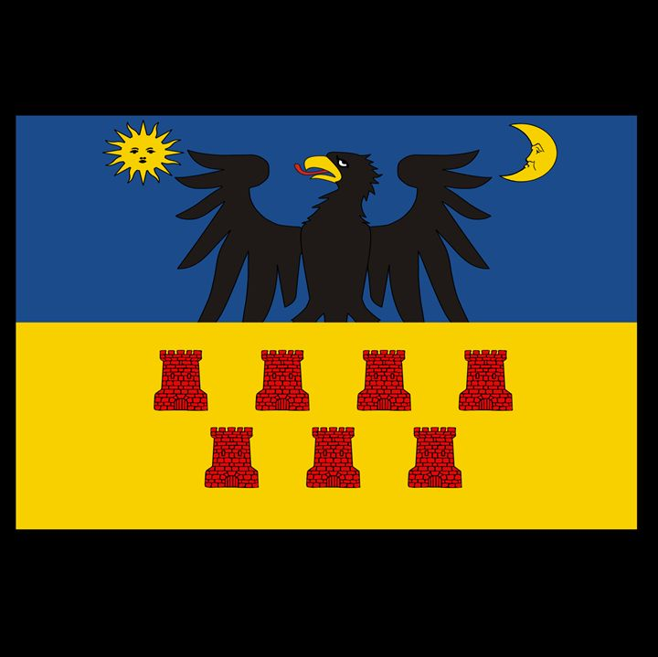 Transylvania Historical Flag #2 - My Evil Twin