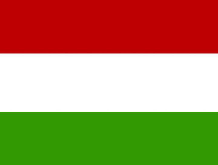 Hungary Flag - My Evil Twin