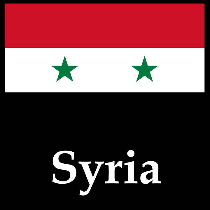 Syria Flag And Name - My Evil Twin