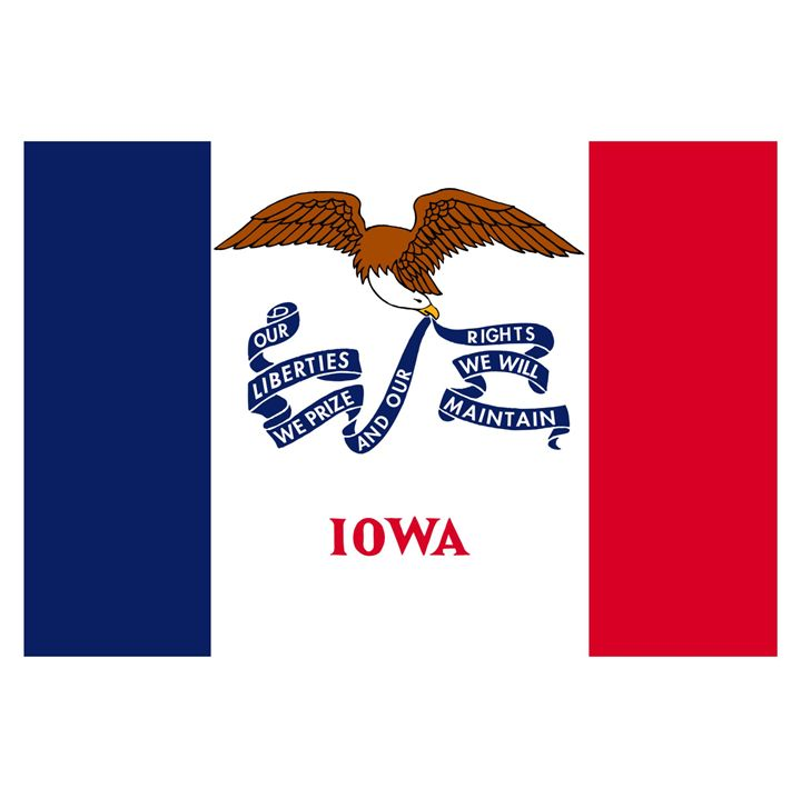 Iowa Flag - My Evil Twin