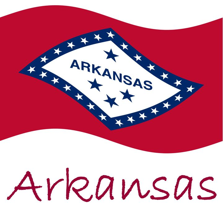 Arkansas Flag - My Evil Twin