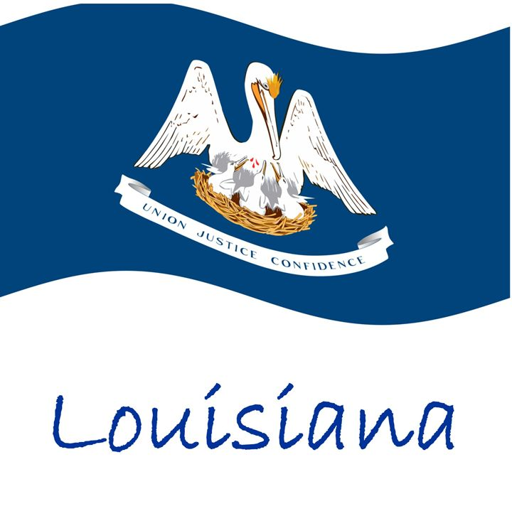 Louisiana Flag - My Evil Twin