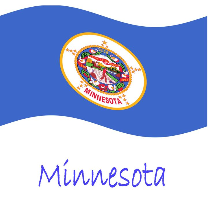 Minnesota Flag - My Evil Twin