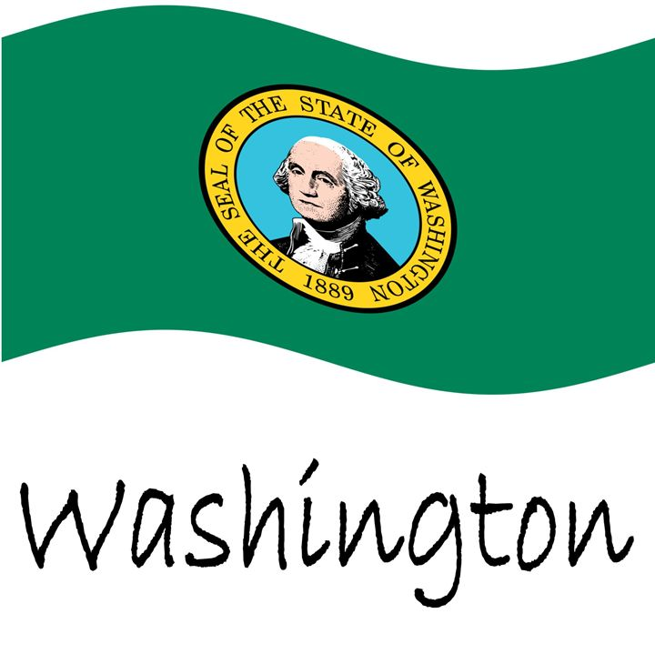 Washington Flag - My Evil Twin
