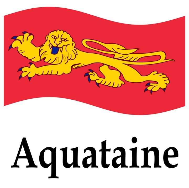 Waving Aquataine, France Flag - My Evil Twin