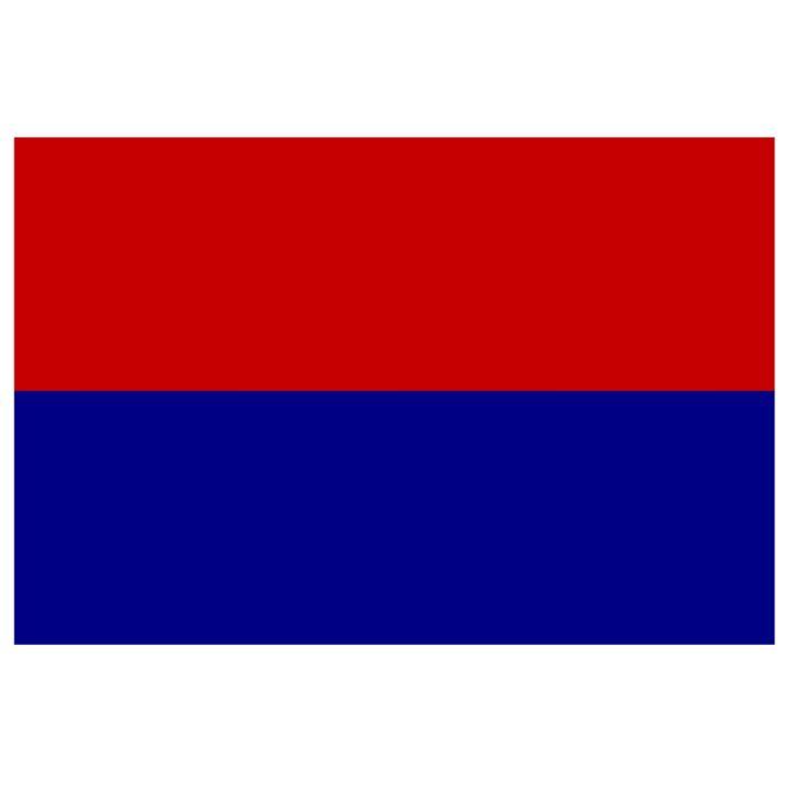Carei, Romania Flag - My Evil Twin