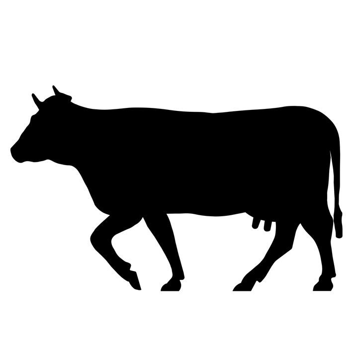 Cow #1 - My Evil Twin