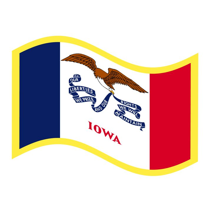 Iowa Flag - My Evil Twin